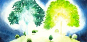 Trees of Eden